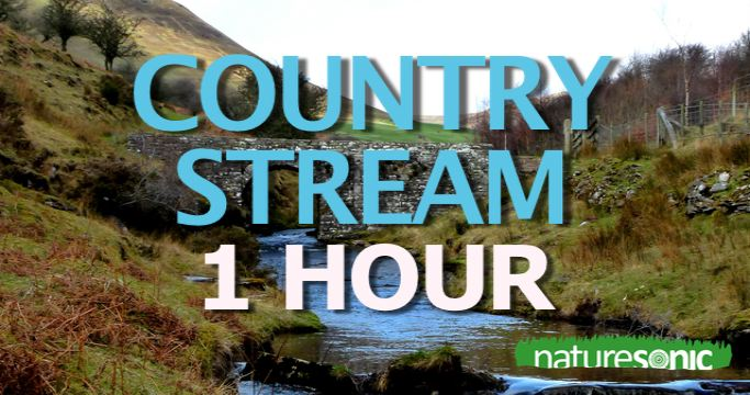 WELSH COUNTRY STREAM & BIRDS – The MOST PEACEFUL Relaxation Sound