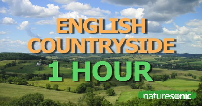 English Countryside Sound Meditation – Deep Relaxation in Pure Nature