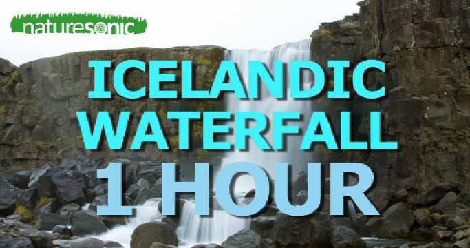 Icelandic WATERFALL Gushing with Torrents of Pure Water – Relaxation Soundscape