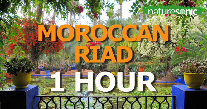 Water Fountain & Birds Sing in Peaceful Moroccan Riad – Relaxation Sound Ambience